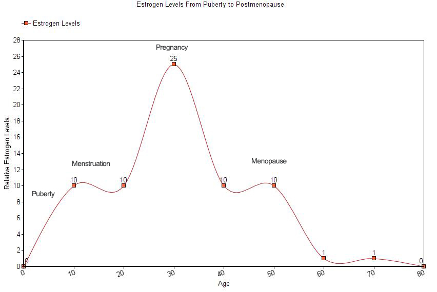 Estrogen Levels From Puberty to Postmenopause