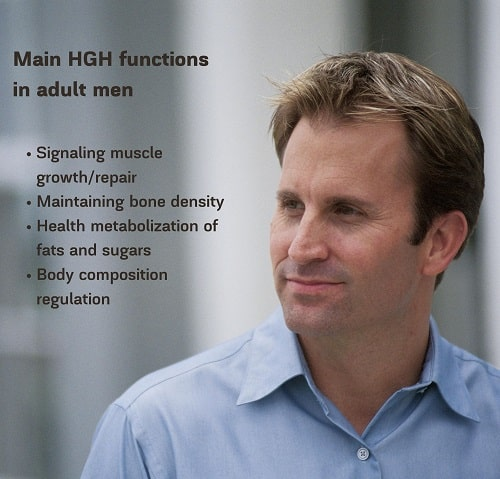 Main HGH functions in adult men