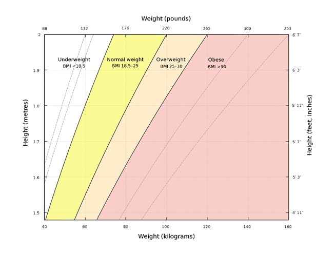 Chart - How BMI is calculated-1
