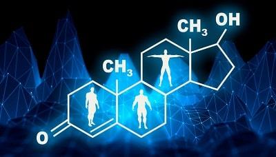 Molecular representation of testosterone