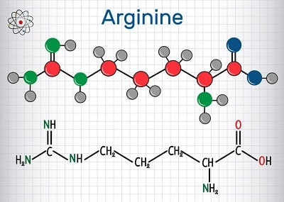 L-Arginine is one of the most powerful natural HGH secretagogues known to science
