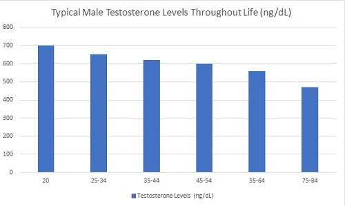 Chart - Typical Male Testosterone Levels Decline Throughout Life (ngdL)