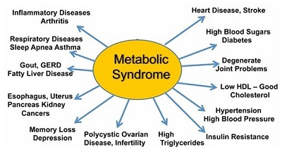 Metabolic Syndrome Effects